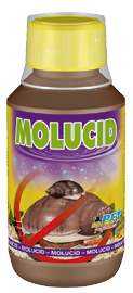Dajana Molucid 250ml